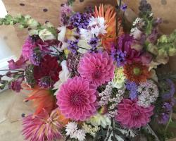 Instow farm grown flower bouquet deal image