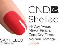 Shellac hands or feet at the Lash and Brow Bar deal image